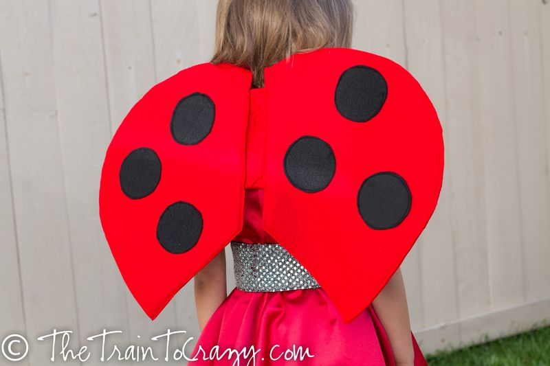 Ladybug costume-4449