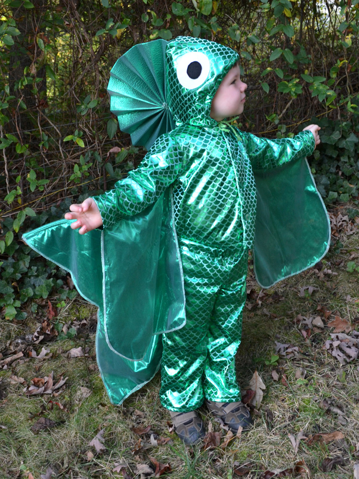 And sheu0027s put together a really fun tutorial to show you how to make a homemade fish costume yourself!  sc 1 st  Andreau0027s Notebook : fish costumes  - Germanpascual.Com