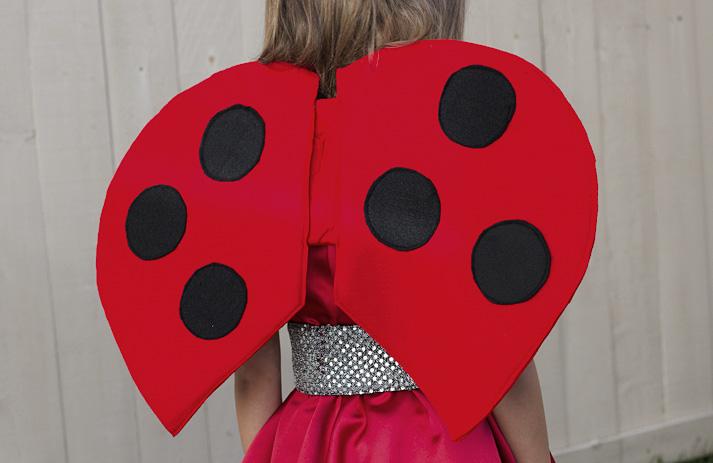 Great DIy ladybug wings