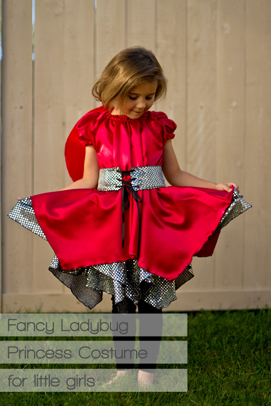 Make a fancy ladybug princess costume! Super cute.
